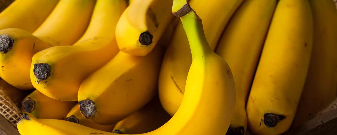 Bananas about bananas - 4.12.192.jpg