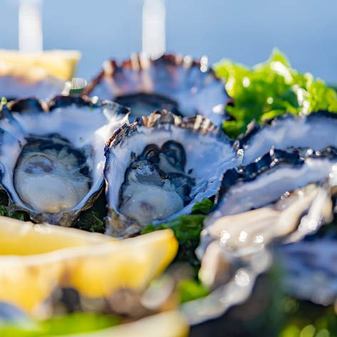 Cape_Bruny_Oysters2.jpg